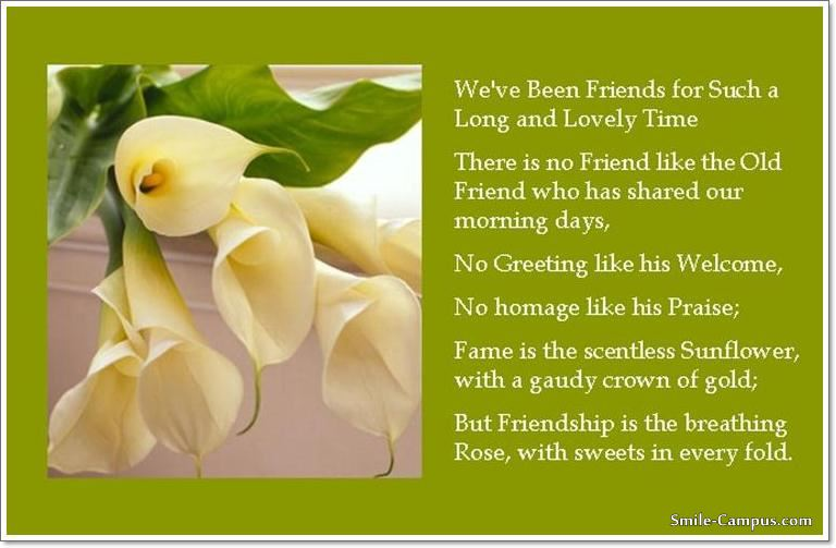 Hello Friend Friends Campus Beauteous Long Quote About Friendship