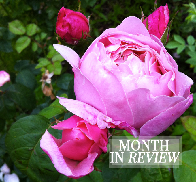 Month In Review.