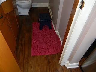 Sliding area rug