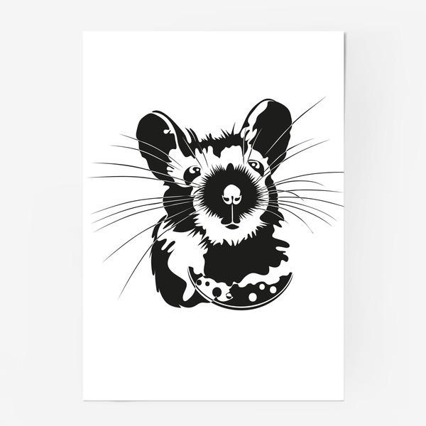 Мышка Нарушка