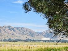 Tremontain, Utah