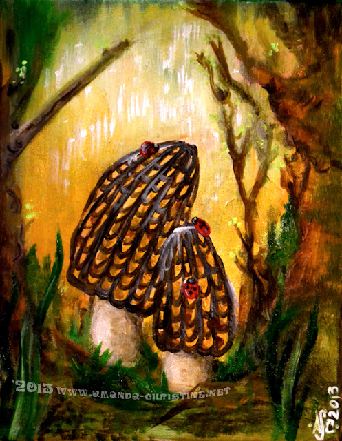 Morels and Ladybugs ©Amanda Christine Shelton www.amanda-christine.net