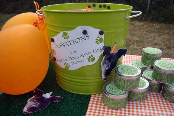 dog_birthday_party donation_station