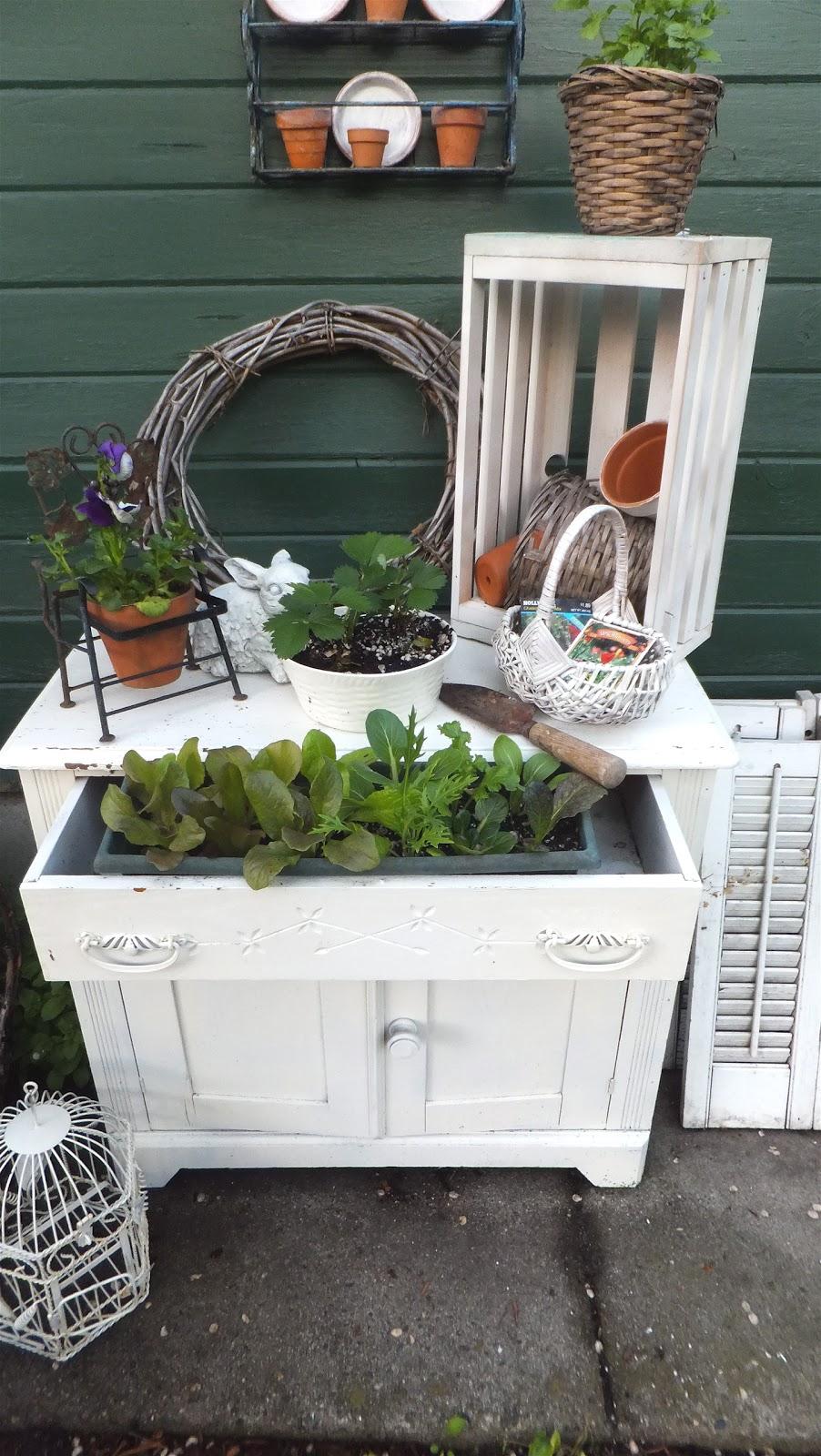 Ash Tree Cottage My Herb Garden Potting Bench