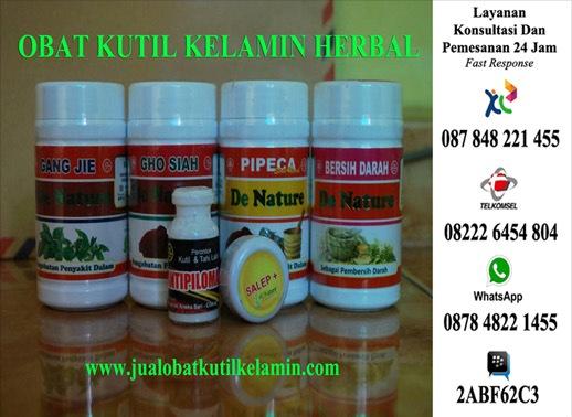 Obat Kutil Kelamin Herbal Untuk Wanita