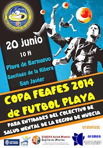 CARTEL DE LA COPA FEAFES 2014