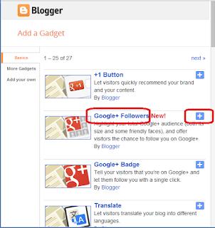 Google + Followers Click