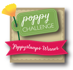 Poppystamps Challenge