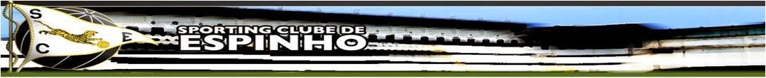 sce banner