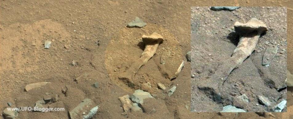 http://1.bp.blogspot.com/-3IXdMD6BHuQ/VEA52tgRsTI/AAAAAAAAHwE/DiqdwTl54f0/s1600/nasa-curiosity-photographed-fossilized-thigh-bone-on-mars.jpg