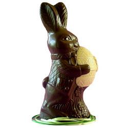 El conejo de Nina antes de que lo comiera.