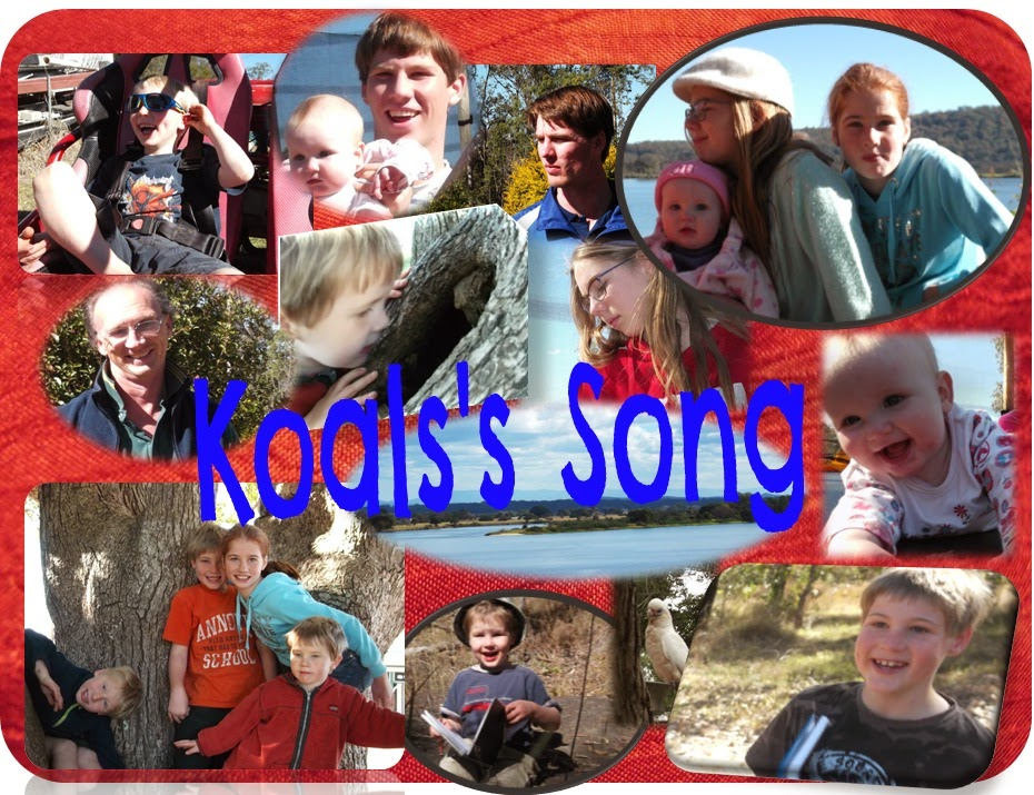 Koala's Song