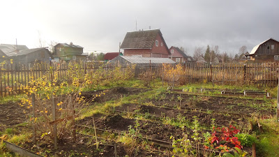 дача, осень