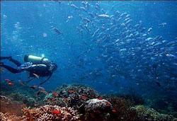 Taman Laut Nasional Takabonerate