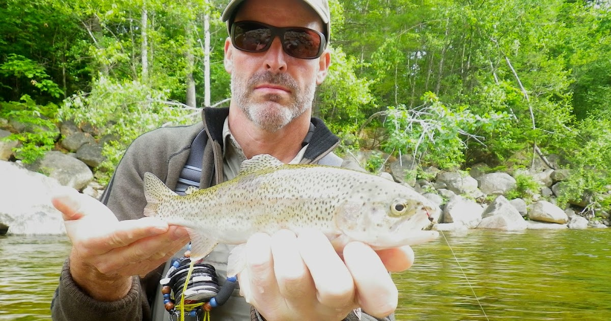 First cast fly fishing fly fishing new hampshire mad river for Nh fishing license cost