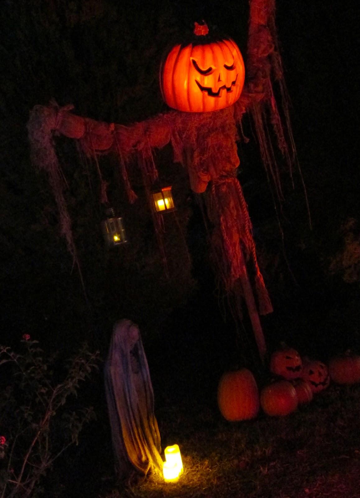 M: HipGirl 20 Yards Halloween Grosgrain Fabric Pictures of halloween yards