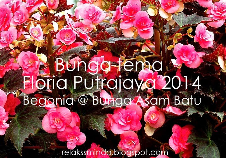 Floria Putrajaya 2014 - Festival Bunga Dan Magic Of The Night