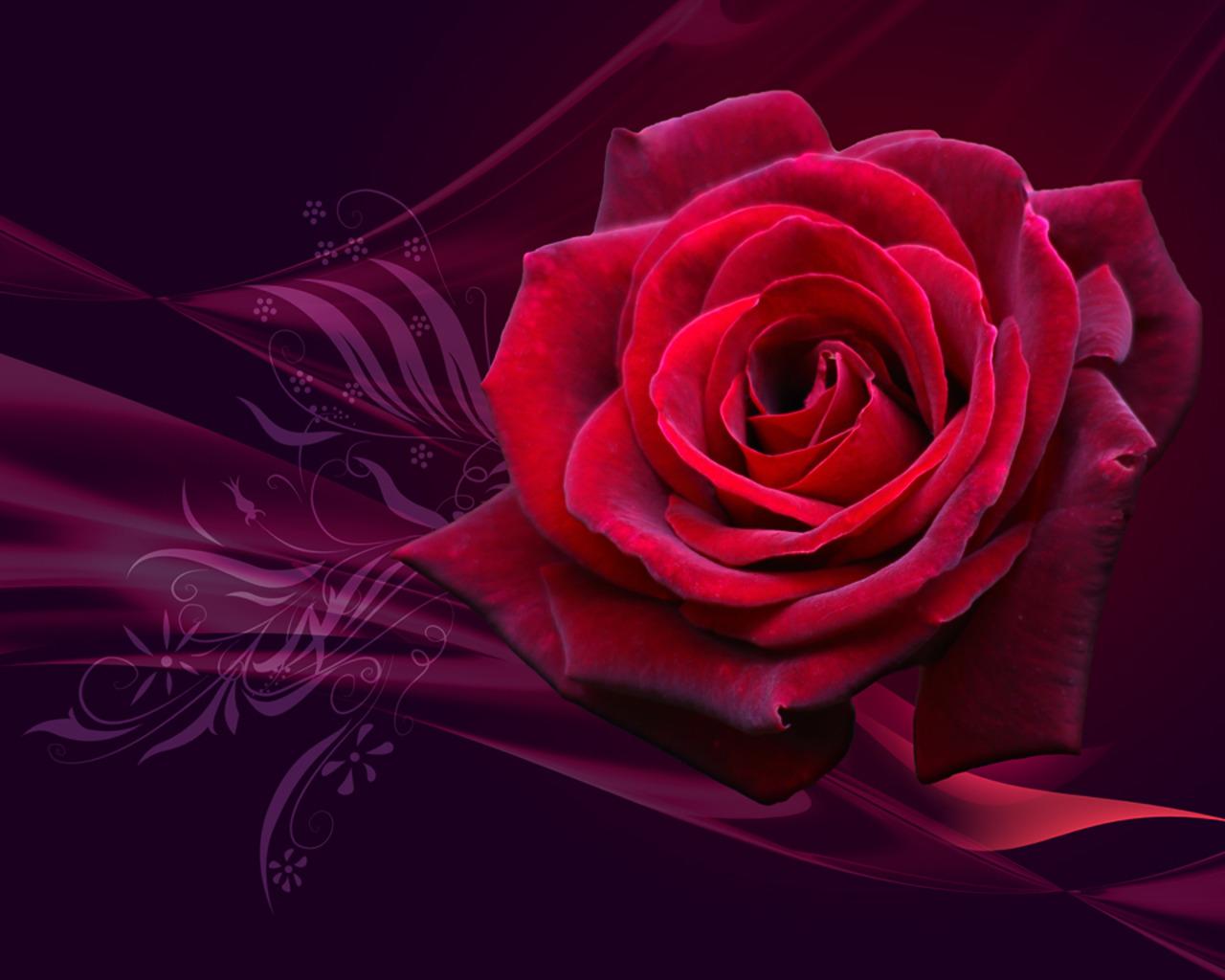 http://1.bp.blogspot.com/-3KsfrZ4fnig/TVdgIQslVUI/AAAAAAAADIk/QA1BhdLRvjk/s1600/Happy+valentine%2527s+day+2011+%25281%2529.jpg