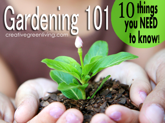 Gardening 101: 10 Things Beginning Gardeners Need To Know