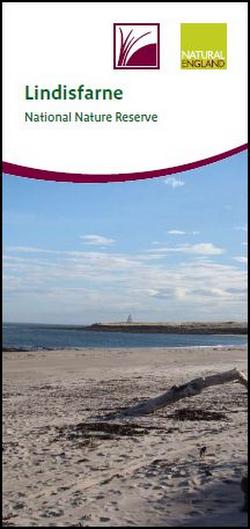 Lindisfarne NNR leaflet