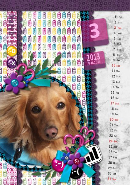 DSB  Calendar 2013-03