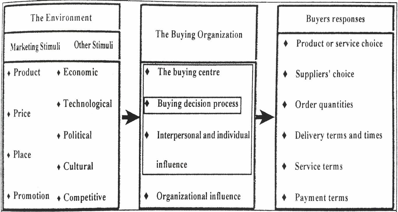 organizational buying process essay Insights into the optimum approach to buying often known as strategic sourcing, it begins the critical process and lays the  organization's overall business.