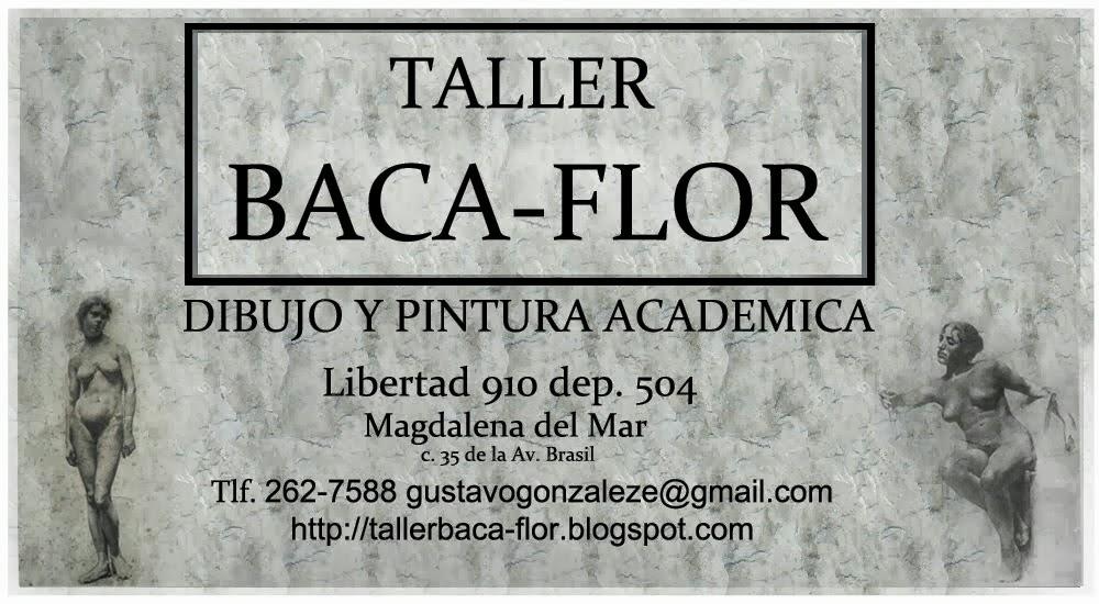 TALLER BACA-FLOR