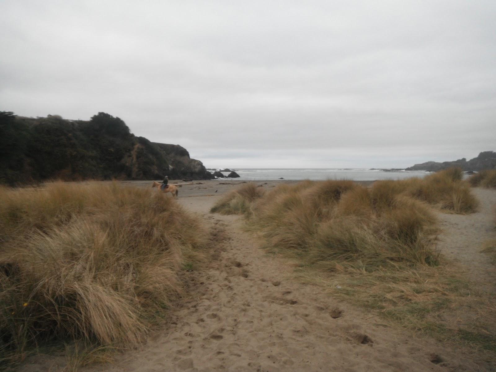 Eel River Beach Club Cost