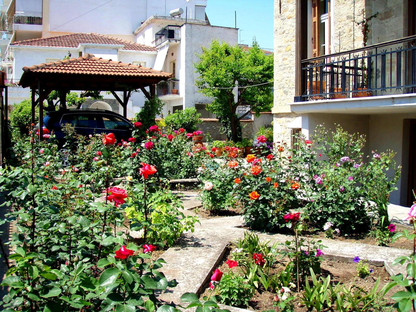 A Lovely Mess Beautiful Rose Gardens