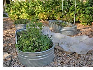 how to build an above ground garden bed