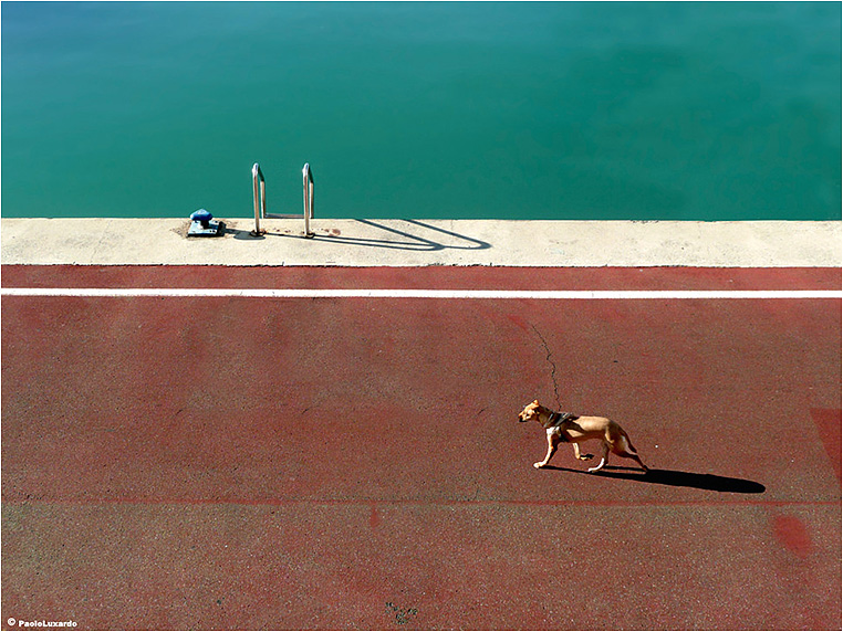 Emerging Photographers, Best Photo of the Day in Emphoka by Paolo Luxardo