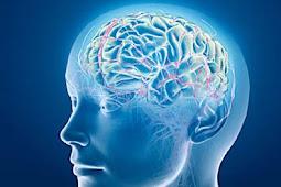 Penyebab Penyakit Stroke Emboli dan Hemoragik