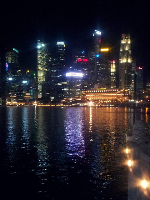 Singapore at night, Skyline