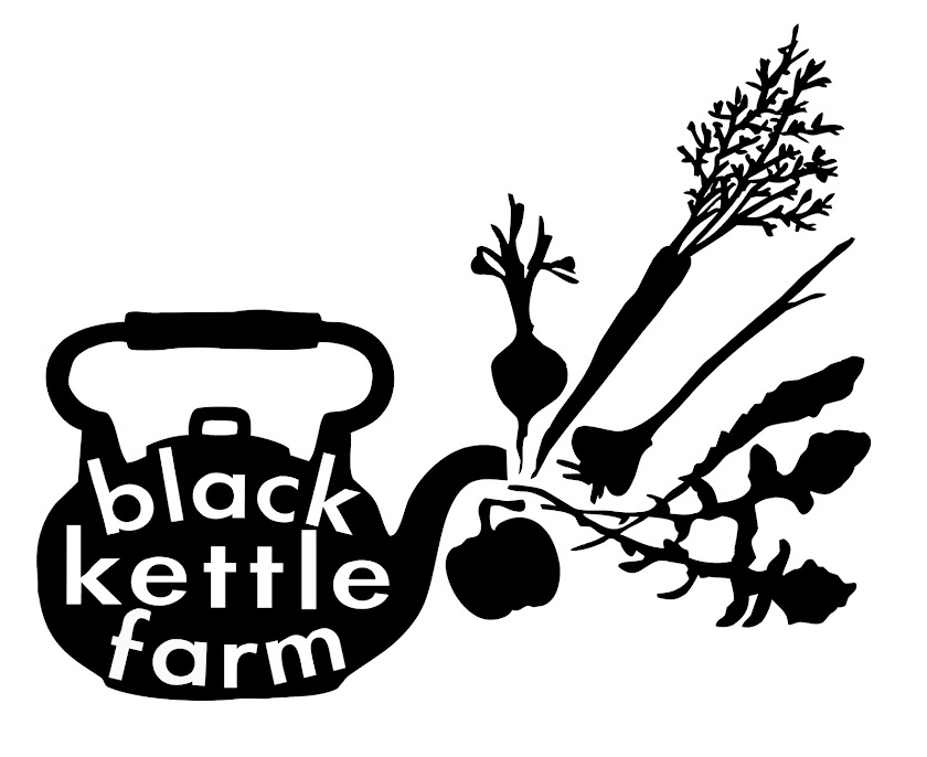 black kettle farm