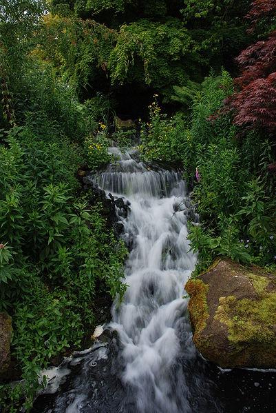 Royal Botanic Garden Edinburgh Exotic Travel Destination