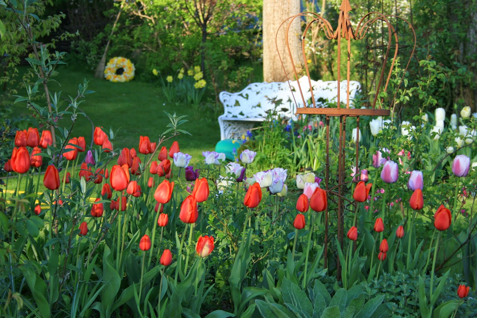 trädgårdsblogg vårblomning