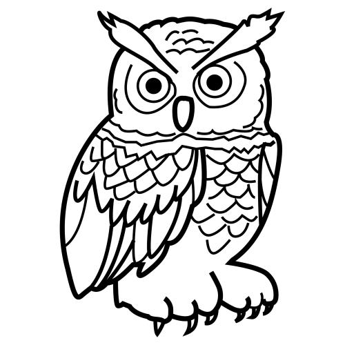 Dibujo de buhos - Imagui