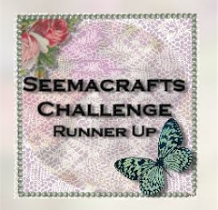 Runner Up at Seema Crafts