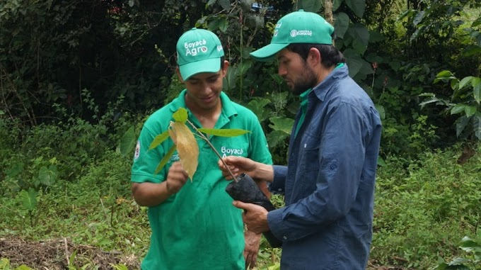 Boyacá agro y su apuesta por la agroecología