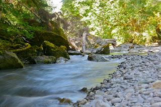 Skokomish River
