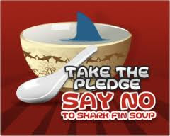 Say No To Shark Fin Soup