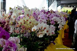 10 Pasar Bunga Terkenal Dunia !