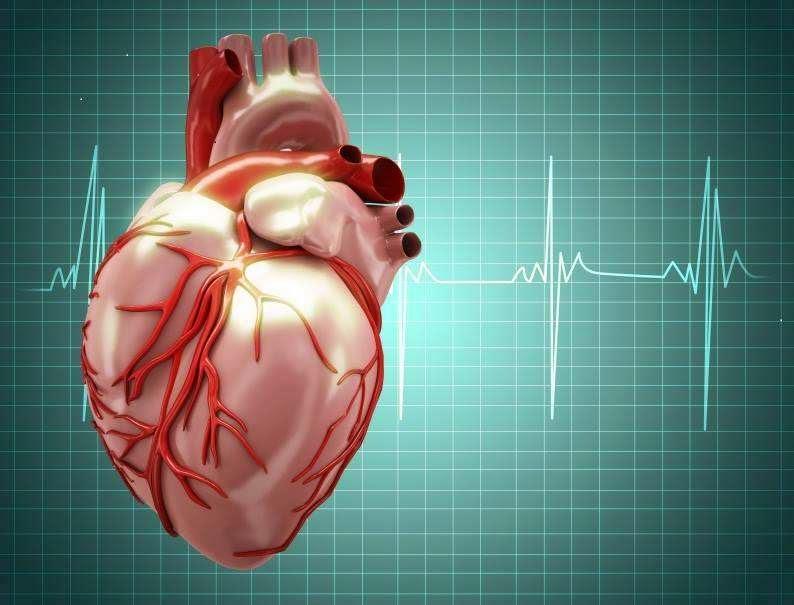 نصائح للوقاية الإصابة أمراض القلب Canadians-reveal-the