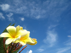 Flowers and Clear Blue Skies!