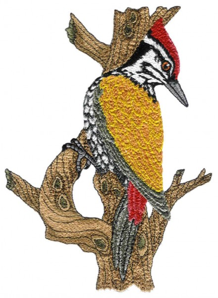 Machine Embroidery Designs by Jagdish Shah   Interesting Creative ...