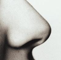 hidung wanita