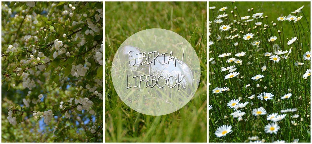 Siberian LifeBook