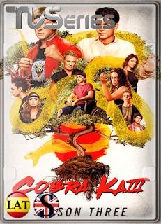 Cobra Kai (TEMPORADA 3) WEB-DL 1080P LATINO/ESPAÑOL/INGLES