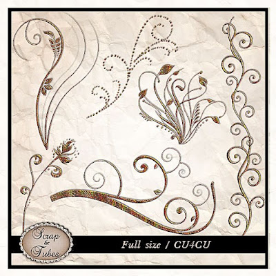 Autumnal Shiny Swirls (CU4CU) .Autumnal+Shiny+Swirls_Preview_Scrap+and+Tubes