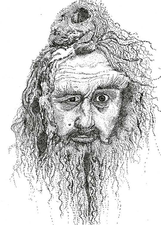 Ilustración, Radagast de Verónica Marín